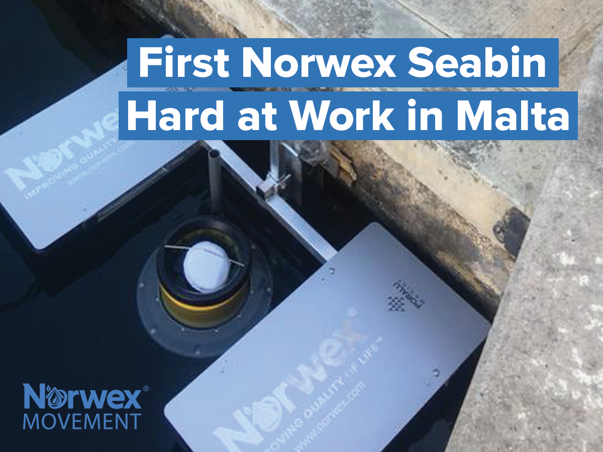 First Norwex Seabin Hard at Work in Malta